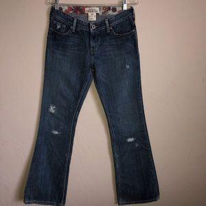 NWT Hollister Premium Dark Wash Flare Jeans